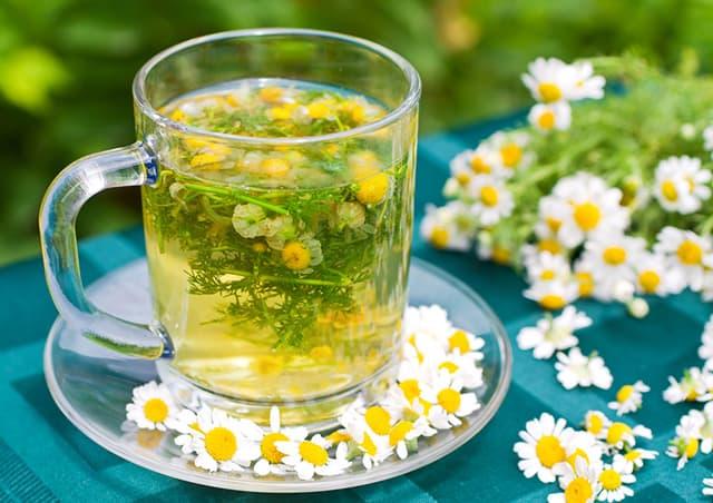 Bất ngờ 6 loại trà thảo mộc giúp ngủ ngon, vị trí số 1 vẫn là Trà hoa cúc