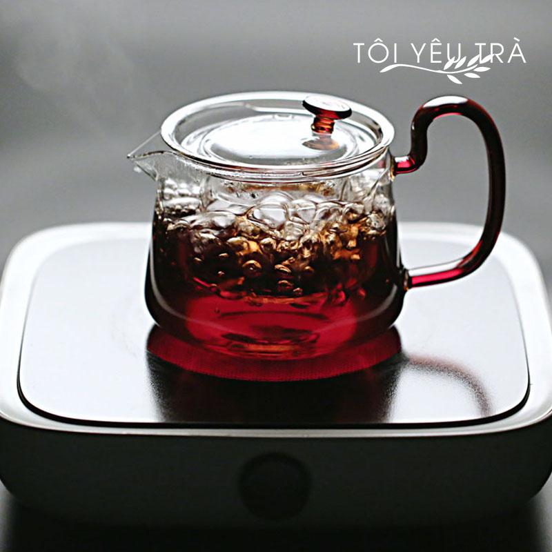 Bình pha trà thủy tinh cao cấp có lõi lọc - 580ml