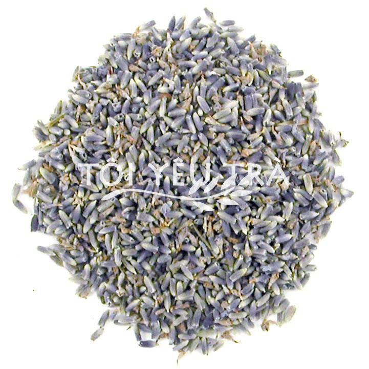 Trà hoa Oải hương (Lavender) Pháp